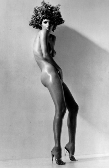294d_herb_ritts_nega_fulo